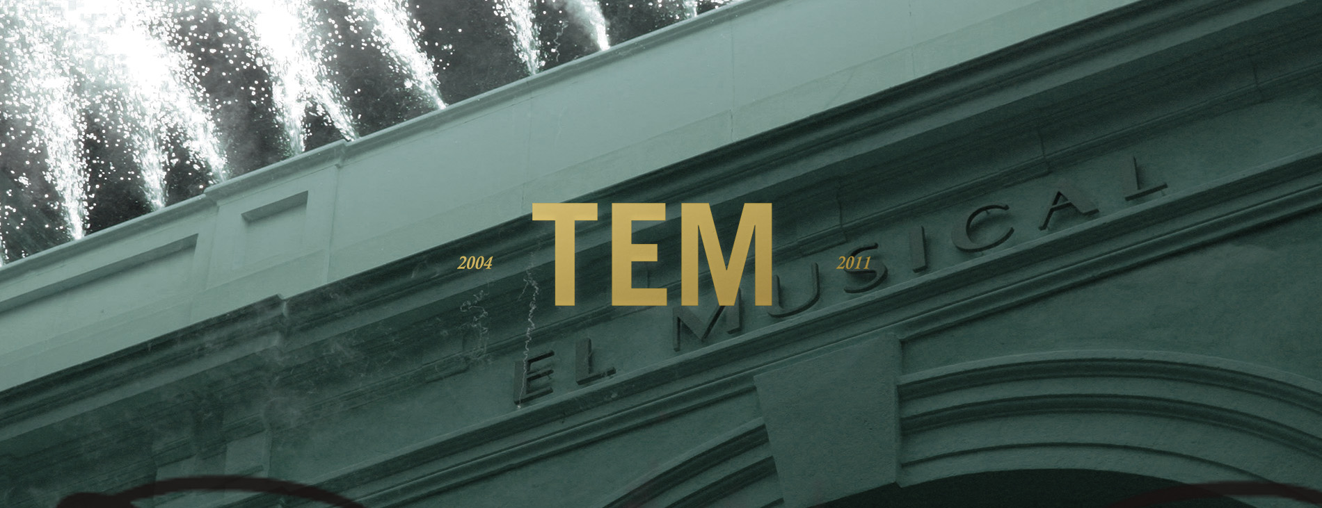 TEM cover